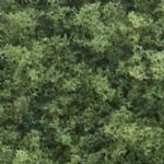 WT1364 Woodland Scenics: Coarse Turf - Medium Green (50 cu. in. Shaker)
